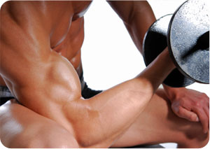 What is Muscle Confusion?