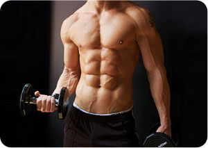top 5 muscle building supplements