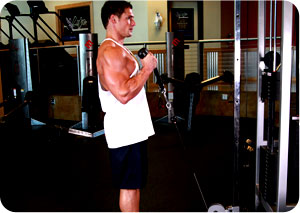 Biceps Curl with Rope – Exercise of the Week