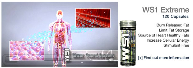 buy cellucor ws1 extreme