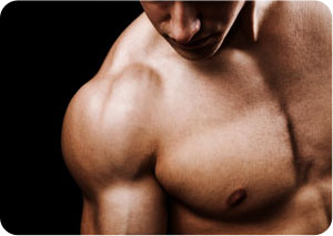 Muscle Building Workouts that Really Work