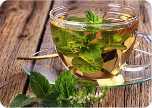 secret fat loss herbs you should try today